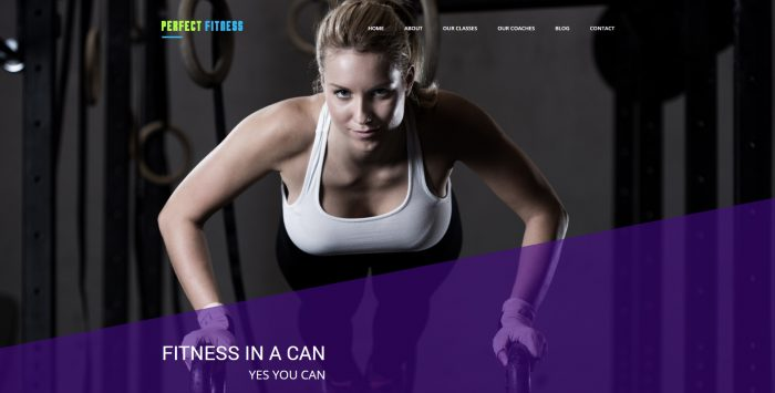 perfectfitness-cover